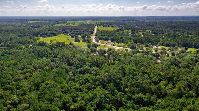 21543 Powell Road, Brooksville, FL 34602 (MLS #T3313573) :: Frankenstein Home Team