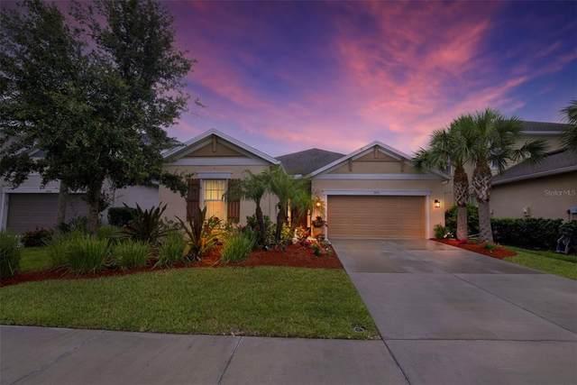 5751 Liatris Circle, Sarasota, FL 34238 (MLS #T3313596) :: Your Florida House Team