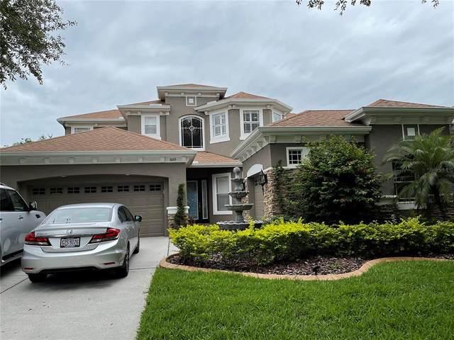 10119 SW Deercliff Drive, Tampa, FL 33647 (MLS #T3313609) :: Delgado Home Team at Keller Williams