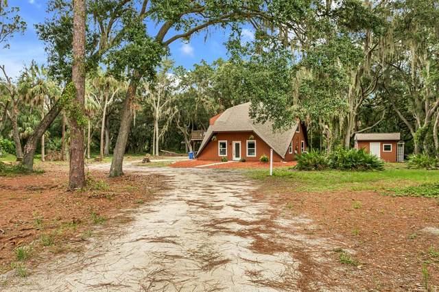 1213 Butch Cassidy Trail, Wimauma, FL 33598 (MLS #T3313614) :: Team Pepka
