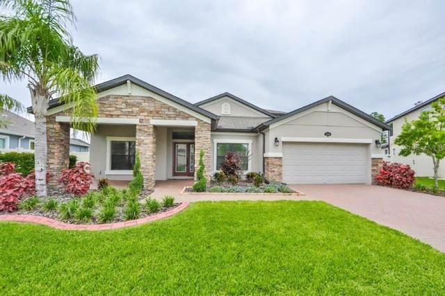 2086 Zamia Loop, Lutz, FL 33558 (MLS #T3313617) :: Vacasa Real Estate