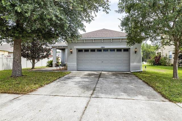 17843 Cunningham Court, Land O Lakes, FL 34638 (MLS #T3313632) :: Kelli and Audrey at RE/MAX Tropical Sands