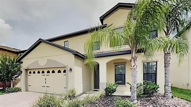 15260 Anguilla Isle Avenue, Tampa, FL 33647 (MLS #T3313648) :: Team Bohannon