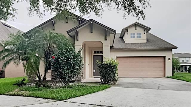 6728 Duncaster Street, Windermere, FL 34786 (MLS #T3313655) :: Your Florida House Team