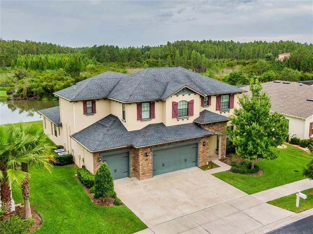 2465 Gwynhurst Boulevard, Wesley Chapel, FL 33543 (MLS #T3313656) :: Vacasa Real Estate