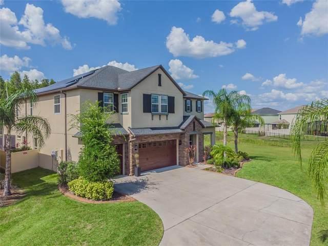 32151 Firemoss Lane, Wesley Chapel, FL 33543 (MLS #T3313668) :: Team Bohannon