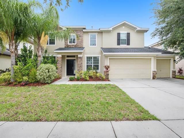 12332 Belcroft Drive, Riverview, FL 33579 (MLS #T3313670) :: Sarasota Property Group at NextHome Excellence