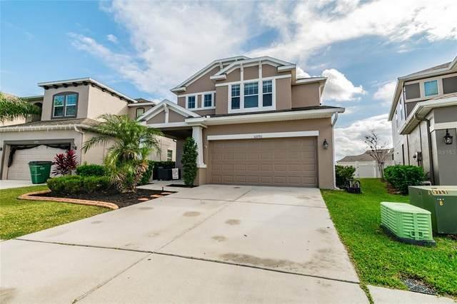 32770 Windelstraw Drive, Wesley Chapel, FL 33545 (MLS #T3313690) :: Team Bohannon