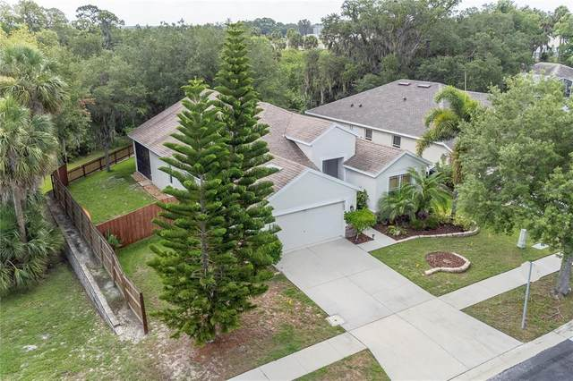 5311 Clover Mist Drive, Apollo Beach, FL 33572 (MLS #T3313694) :: Zarghami Group