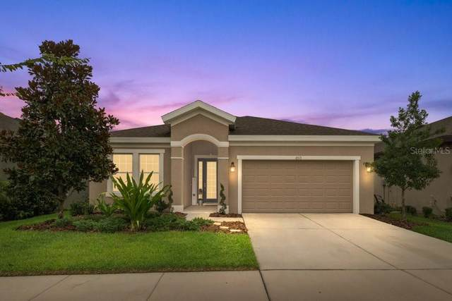 6313 Springline Place, Apollo Beach, FL 33572 (MLS #T3313739) :: Team Bohannon