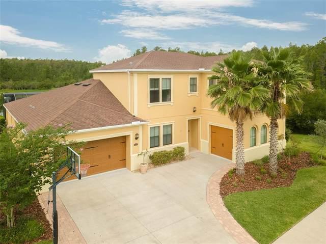 31976 Sandspirit Place, Wesley Chapel, FL 33543 (MLS #T3313741) :: Vacasa Real Estate