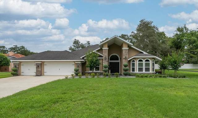 4352 Dottie Court, Weeki Wachee, FL 34607 (MLS #T3313742) :: Vacasa Real Estate