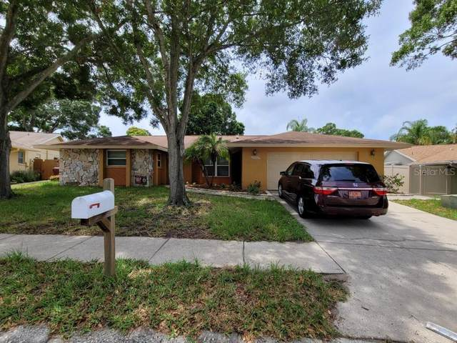 1071 Mineola Court, Palm Harbor, FL 34683 (MLS #T3313767) :: Sarasota Property Group at NextHome Excellence