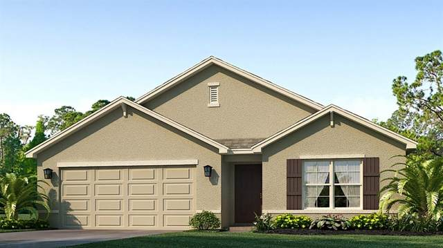 5124 Granite Dust Place, Palmetto, FL 34221 (MLS #T3313799) :: Zarghami Group