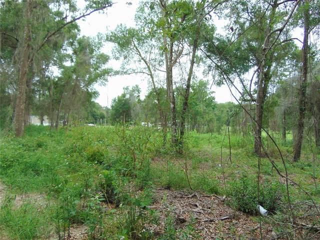 975 Cedar Tree Drive, Brooksville, FL 34602 (MLS #T3313800) :: Vacasa Real Estate