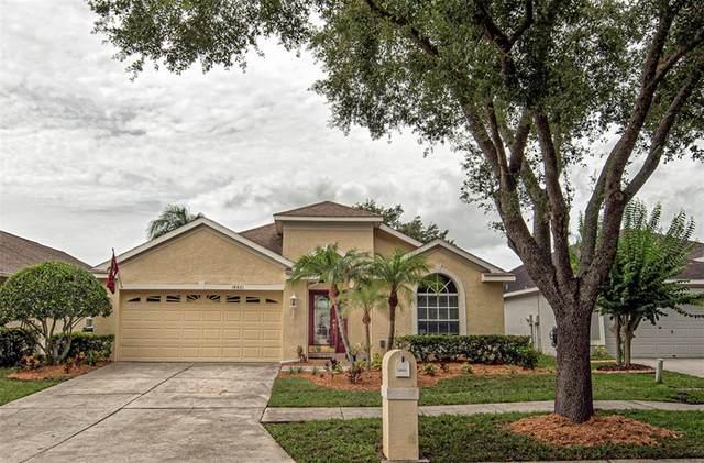 18821 Maisons Drive, Lutz, FL 33558 (MLS #T3313805) :: Griffin Group