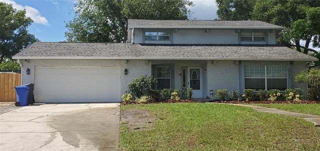 14009 Dominion Court, Tampa, FL 33613 (MLS #T3313824) :: Vacasa Real Estate