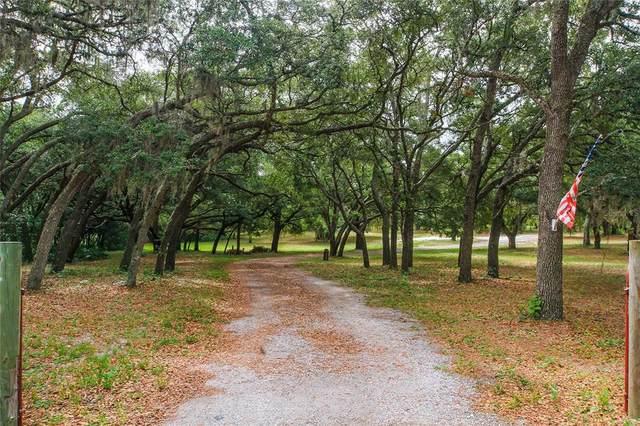 Hudson, FL 34669 :: Vacasa Real Estate