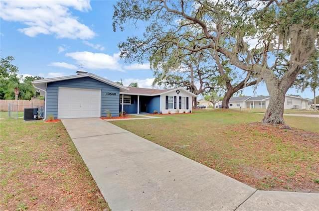 10540 Oak Hill Drive, Port Richey, FL 34668 (MLS #T3313843) :: Team Bohannon