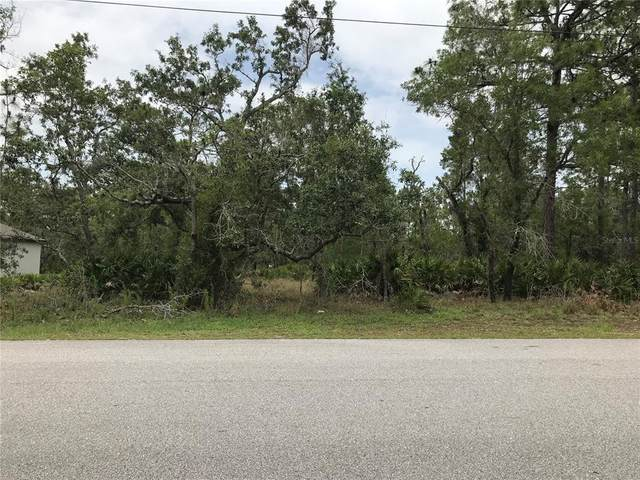 11475 Murre Avenue, Weeki Wachee, FL 34614 (MLS #T3313844) :: Vacasa Real Estate