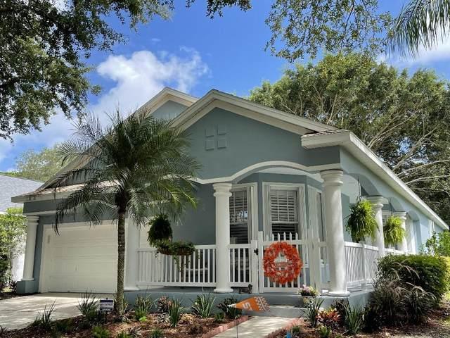 498 Meadow Sweet Circle, Osprey, FL 34229 (MLS #T3313867) :: Prestige Home Realty