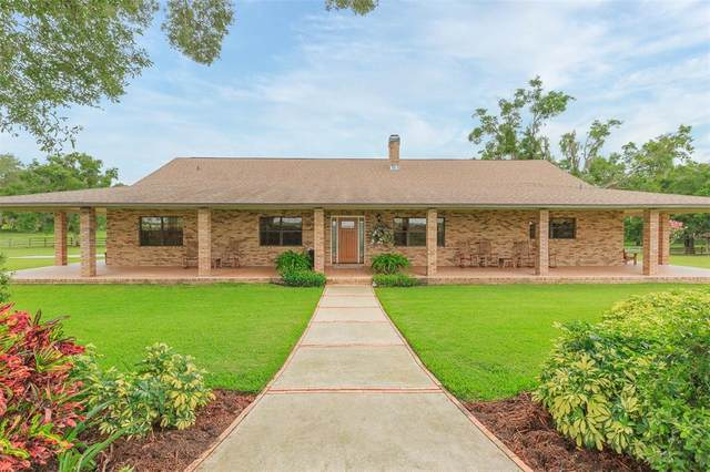 9229 Fort King Road, Dade City, FL 33525 (MLS #T3313869) :: Zarghami Group