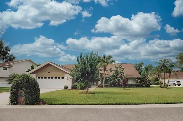 2869 Hammock Drive, Plant City, FL 33566 (MLS #T3313881) :: Team Bohannon