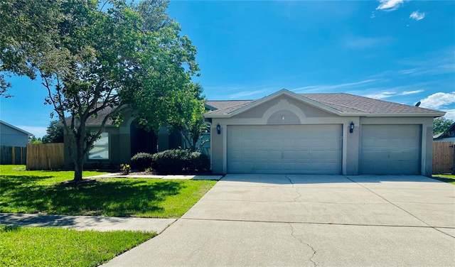 10517 Salisbury Street, Riverview, FL 33569 (MLS #T3313887) :: Prestige Home Realty
