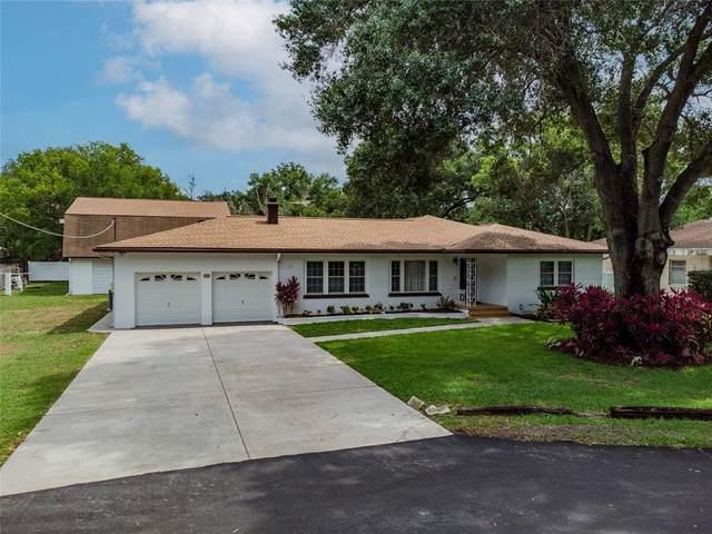 127 W Wildwood Street, Tampa, FL 33613 (MLS #T3313896) :: Vacasa Real Estate
