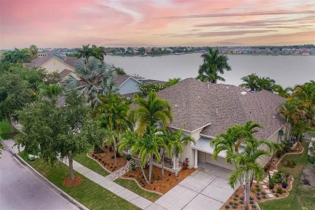 5229 Brighton Shore Drive, Apollo Beach, FL 33572 (MLS #T3313922) :: Vacasa Real Estate