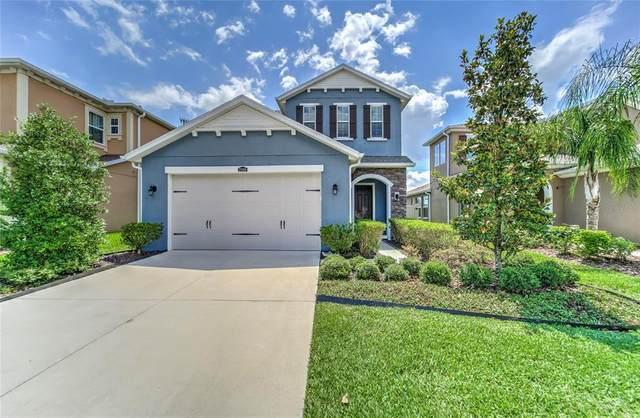 29188 Perilli Place, Wesley Chapel, FL 33543 (MLS #T3313947) :: Vacasa Real Estate