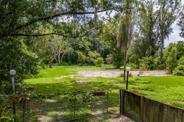 12954 Lincoln Road, Riverview, FL 33578 (MLS #T3313998) :: Your Florida House Team