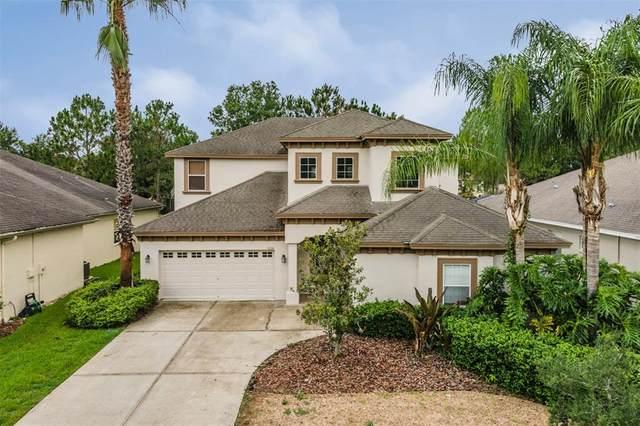 3224 Grassglen Place, Wesley Chapel, FL 33544 (MLS #T3314002) :: Vacasa Real Estate