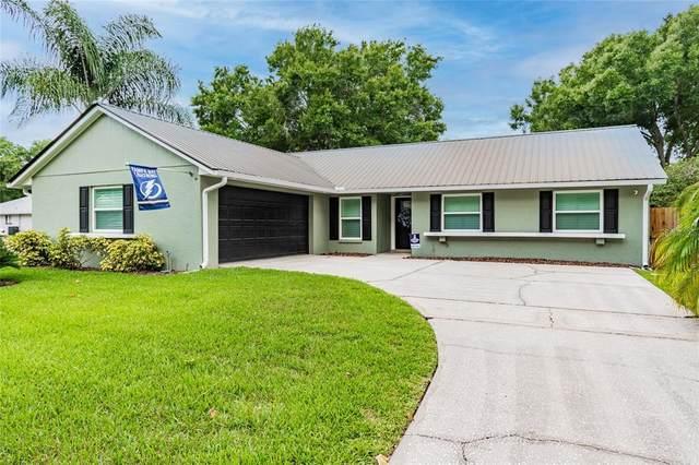 15702 Crying Wind Drive, Tampa, FL 33624 (MLS #T3314009) :: Vacasa Real Estate