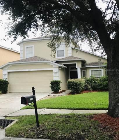 1000 Portmoor Way, Winter Garden, FL 34787 (MLS #T3314022) :: Your Florida House Team