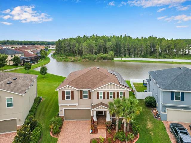 12320 Lake Boulevard, New Port Richey, FL 34655 (MLS #T3314036) :: Griffin Group