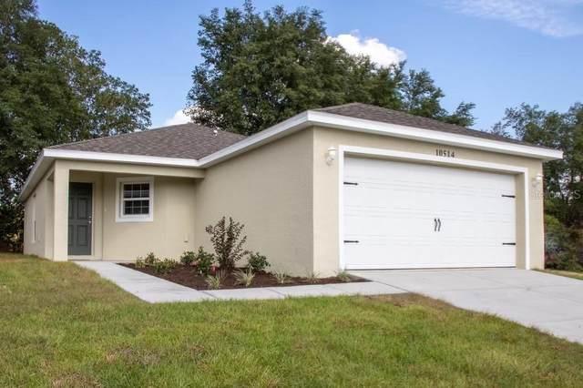 7278 E Cassidy Lane, Floral City, FL 34436 (MLS #T3314050) :: Century 21 Professional Group