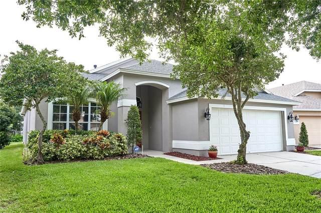 9807 Bayboro Bridge Drive, Tampa, FL 33626 (MLS #T3314064) :: Griffin Group