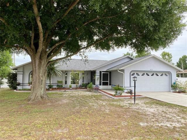 927 Mikasuki Drive, Lakeland, FL 33813 (MLS #T3314065) :: The Light Team