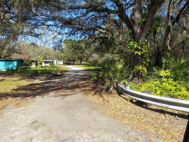 11024 Old Hillsborough Avenue, Tampa, FL 33610 (MLS #T3314071) :: Zarghami Group