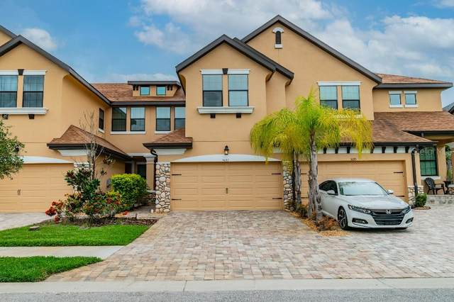 5081 Wandering Way, Wesley Chapel, FL 33544 (MLS #T3314079) :: The Home Solutions Team | Keller Williams Realty New Tampa