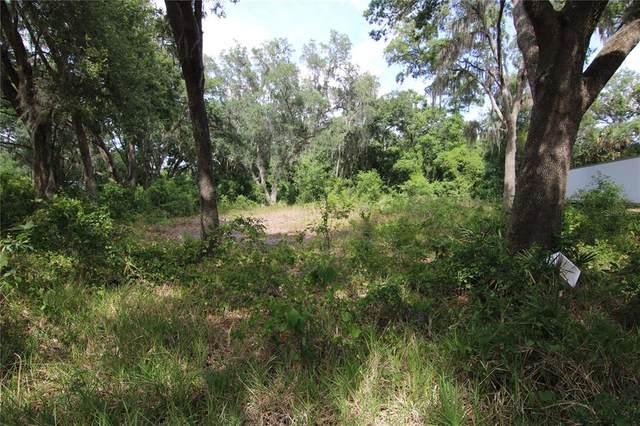 Sydney Washer Road, Dover, FL 33527 (MLS #T3314095) :: Keller Williams Realty Peace River Partners