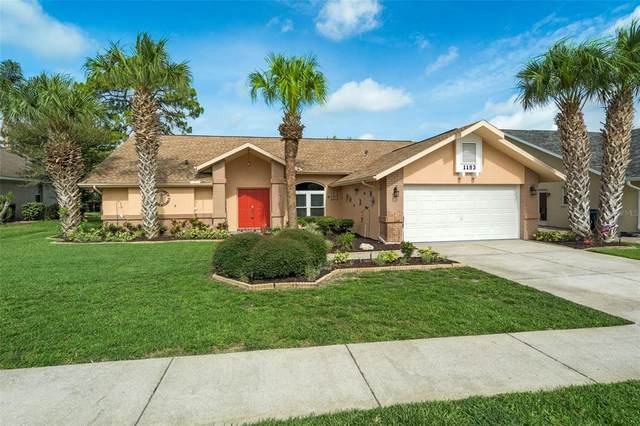 1193 Muscovy Drive, Spring Hill, FL 34608 (MLS #T3314097) :: Bridge Realty Group
