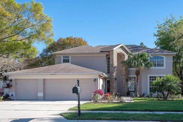 5682 Stag Thicket Lane, Palm Harbor, FL 34685 (MLS #T3314107) :: Keller Williams Realty Peace River Partners