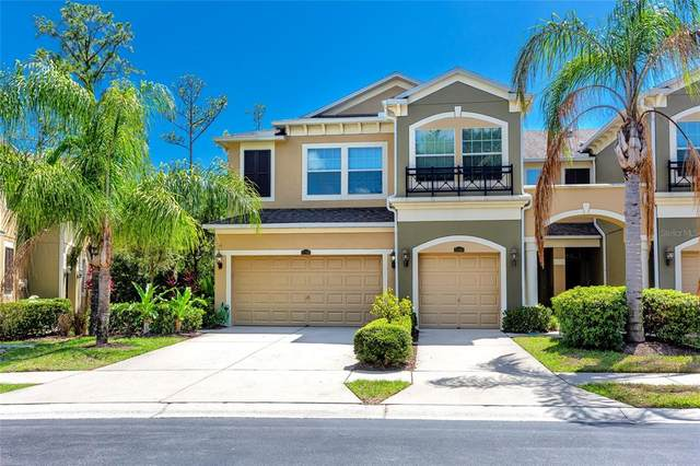 12566 Silverdale Street, Tampa, FL 33626 (MLS #T3314153) :: Griffin Group