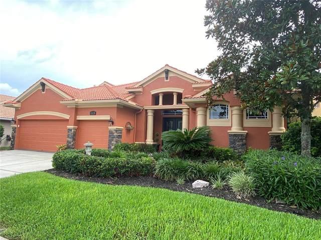 11639 Belle Haven Drive, New Port Richey, FL 34654 (MLS #T3314156) :: Bridge Realty Group