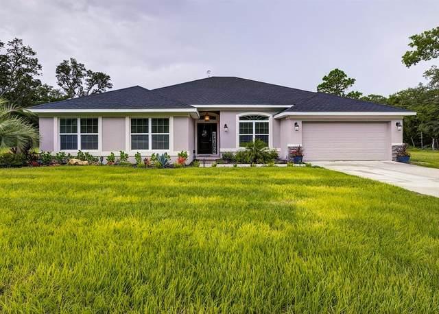 18209 Merwyn Circle, Weeki Wachee, FL 34614 (MLS #T3314210) :: Zarghami Group