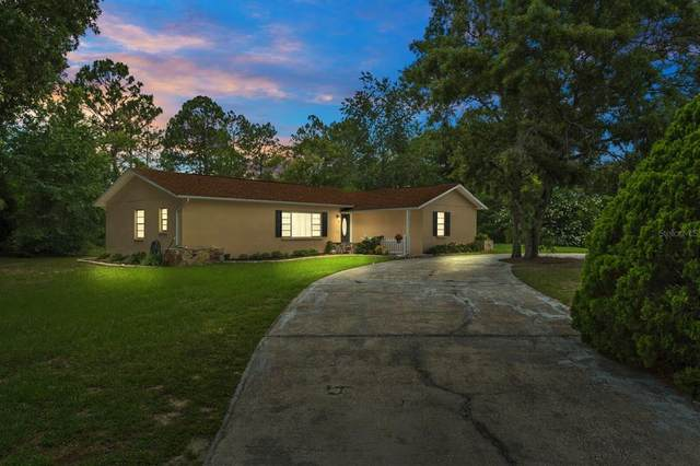 12090 Topaz Street, Spring Hill, FL 34608 (MLS #T3314219) :: Bridge Realty Group