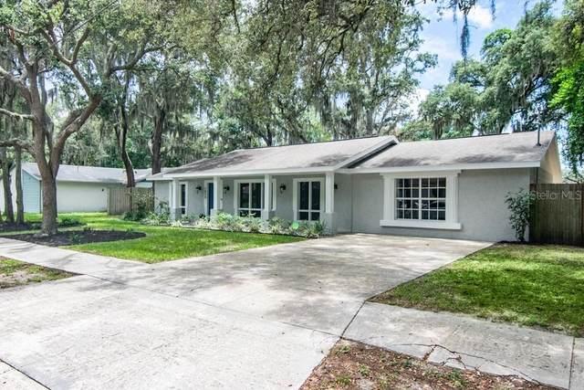 7024 Doreen Street, Tampa, FL 33617 (MLS #T3314236) :: Vacasa Real Estate