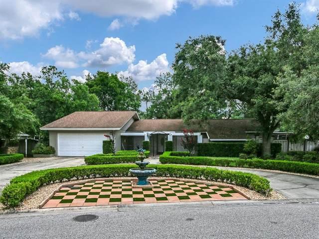 702 Rob Roy Place, Temple Terrace, FL 33617 (MLS #T3314278) :: Vacasa Real Estate